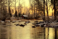 The last day of 2018 (irio.jyske) Tags: colors sunrise sun morning lastday2018 river stones whitewater creek stream flowing forest trees saunacottage nature naturephoto naturephotograph naturepictures naturepic naturephotographer naturephotos naturescape naturepics natural landscapephotograph landscape lanscape landscapepic landscapes landscapephotographer landscapephotos landscapepics lakescape photographer photograph photos pic beauty beautiful nice