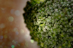 Broccoli Bokeh (Victor Burclaff) Tags: broccoli macromondays green bokeh vegetable