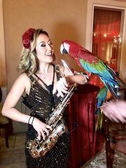 #HCwinds #HayanCharlston #event #entertainment #soloset #performance #newbuddy #musical #parrot #exotic #theme #bird #endangeredspecies #weekend #blast #solo #artist #artistoninstagram #dakota #phaeton #fiberreed (hcwinds.official) Tags: hcwinds hayancharlston event entertainment soloset performance newbuddy musical parrot exotic theme bird endangeredspecies weekend blast solo artist artistoninstagram dakota phaeton fiberreed