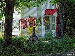 Couleurs d'été (Jean S..) Tags: clothes clothesline rural shirt colors trees red green flowers house building