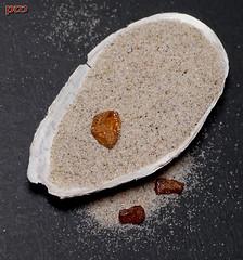 Mitbringsel.... (peterphot) Tags: russland kaliningrad königsberg ostsee baltischesmeer halbinsel nehrung sand bernstein