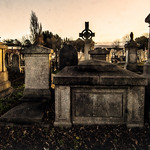 MOUNT JEROME CEMETERY IN HAROLD'S CROSS [ PHOTOGRAPHED USING A 15 YEAR OLD ADAPTED 12-24mm SIGMA LENS]-146187 thumbnail
