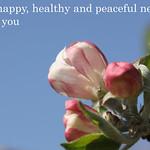 Apple blossom new year greetings thumbnail