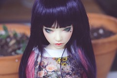 [026/365] Telyth (Ise-Bandit) Tags: abjd bjd asian ball joint doll dollfie resin iplehouse ih jid asa telyth