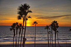 Sunset 15-12-29-18 (rod1691) Tags: sunset oceanside california palms beach ocean clouds