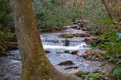 DSC02009 (PsycDocF) Tags: chattahoocheeoconeenationalforests northgeorgia georgia autumn waterfall