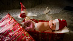It's Christmas Time (A.K. 90) Tags: baby kid kind shooting weihnachten christmas red rot gift geschenk portrait people indoor kleinkind sigma30mm14 sonyalpha6000 look sweet