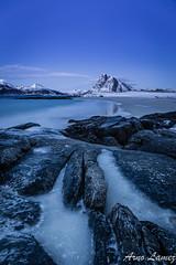 blue lofoten (arnolamez) Tags: seascape lofoten mountain bluehour ice landscape paysage