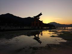 Miyajimacho (bruno carreras) Tags: japon japan nippon isla island miyajima isukushima pagoda templo temple torii senjokaku hatsukaichi miyajimacho ciervo deer shika sol sun sunsen aterdecer puerto budismo budist