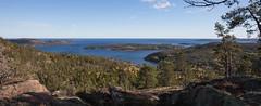 Vue de la montagne (sosivov) Tags: sweden highcoast högakusten hummelvik view mountain sea forest trees