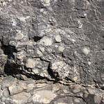 Intraclastic limestone (Mill Knob Member, Slade Formation, Upper Mississippian; Clack Mountain Road Outcrop, south of Morehead, Kentucky, USA) 2 thumbnail