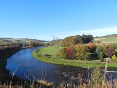 River Don, Dyce, Aberdeen, Oct 2018 (allanmaciver) Tags: river don aberdeen north east scotland autumn colours trees bleu shade shadows curve landscape allanmaciver
