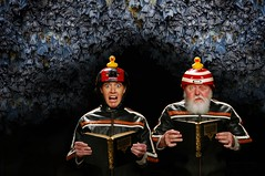 The Rubber Duck Daredevil Squadron recites Poetry in Bracken Cave (Studio d'Xavier) Tags: werehere extremereads brackencave rubberduckdaredevilsquadron reading cave poetry bats tadaridabrasiliensis 313482