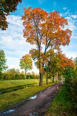 Alexandrovsky Park (Shumilinus) Tags: 1855mmf3556 2018 autumn nikond300s landscape sky clouds footpath trees lushfoliage canal water grass park