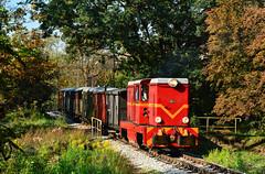 Lxd2-364 (Radosław Matysek) Tags: lxd2 narrow gauge diesel polska poland lxd2364 górnośląskie koleje wąskotorowe tarnowskiegóry miasteczko śląskie