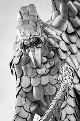 Adler und Schlange (UsualRedAnt) Tags: 70d kurpark ef100mmf28lmacrois deutschland f40 schlange bayern vogel adler greifvögel skulptur tier canon badneustadt natur metall aquila aves germany