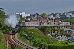 Steam Season Starts in Spring (Better Living Through Chemistry37 (Archive3)) Tags: britannia 70000 dartmouthexpress steam