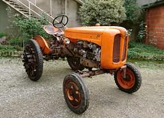 Fiat 211 R allestimento risaia (samestorici) Tags: trattoredepoca oldtimertraktor tractorfarmvintage tracteurantique trattoristorici oldtractor veicolostorico 211r lapiccola forrice reisfeldtracteur riztracteurs paddytractors paddytraktoren reis