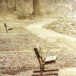 Perspective on Benches   ....HBM!  (Explored 12-17 pm) thumbnail