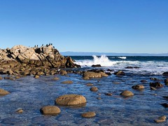 Asilomar (patia) Tags: asilomar california ocean waves xmas2018