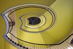 Yellow swirl (Elbmaedchen) Tags: staircase stairwell stairs stufen steps spirale treppenauge treppenhaus treppe gelb yellow wendeltreppe swirl curves lines escaliers escaleras dresden universität architektur interior roundandround upanddownstairs