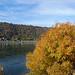 2018-11-01 11-04 Koblenz 101