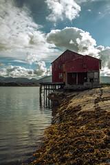 Abandoned fisher's hut (aylavanderwal) Tags: norway atlantic highway scandinavia sea outdoor abandoned urbex nature fish fisher clouds moody