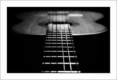 Don't fret (G. Postlethwaite esq.) Tags: bw dof macro sonya7mkii staffordshire timtoft blackandwhite bokeh cellos closeup depthoffield frets fullframe guitar instruments mirrorless monochrome photoborder selectivefocus strings violins unlimitedphotos