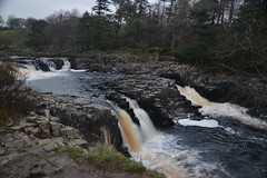 English Waterfalls: Low Force, County Durham (CoasterMadMatt) Tags: lowforce2018 lowforce lowforcewaterfall low force waterfall waterfalls fall falls englishwaterfalls waterfallsinengland nature natural landscape landscapes naturallandscapes countryside englishcountryside rural geology geography teesdale teesvalley tees valley countydurham county durham northeastengland england britain greatbritain great unitedkingdom united kingdom gb uk europe northpennines north pennines thepennines november2018 autumn2018 november autumn 2018 coastermadmattphotography coastermadmatt photos photographs photgraphy nikond3200