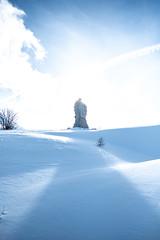 Simplonpass_26. Januar 2018-13 (silvio.burgener) Tags: simplonpass simplon switzerland adler schweiz swiss svizzera suisse hospiz sempione steinadler