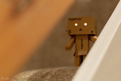 Playing on the stairs... (Dan Elms Photography) Tags: danbo danboard figure toy character canon 50mm 5d 5dmkiii canon5d canon50mm amazon amazonjp danelms danelmsphotography talldan76 wwwdanelmsphotouk