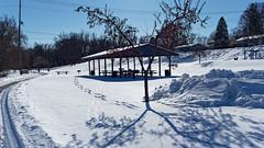 Jaycee Park (joeldinda) Tags: picnictable tree park sky footprints jayceepark parks jcpark shelter pavilion lightandshadow em1ii omd shadowplay 4433 february em1 olympus omdem1mkii michigan eatoncounty grandledge snow 2019 winter weather 32365 20190201jayceeparkem1raw464433