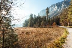 Am Hintersee (Obachi) Tags: berchtesgarden flickr hintersee groseshäuselhorn zauberwald