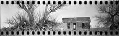 (No Stone Unturned Photography) Tags: black white monochrome kodak folding expired ilford delta 100 35mm film sprocket holes jiffy camera art deco 1933 six16 616 panoramic home house