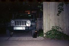 (Just A Stray Cat) Tags: jeep wrangler kodak farbwelt 800 expired black cat cats kitty kittens gato street montreal quebec canada backstreet back 35mm 35 mm film analog analogue olympus mju mjuii ii stylus epic 28