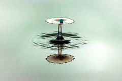 Perle auf ne Servierschale (Henryk D) Tags: drops experimental tat tropfen wasser wassertropfen