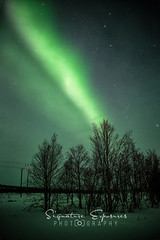 190306152145-4610-Edit (shannbil (Signature Exposures)) Tags: northernlights aurora auroraborealis finland norway winter shannonbileski signatureexposures shannbil landscape photography