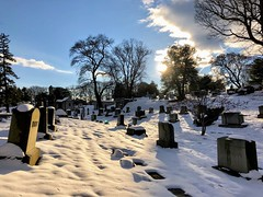 """""""Nothing makes the earth seem so spacious as to have friends at a distance; they make the latitudes and longitudes."""" ―Henry David Thoreau 🌅 (anokarina) Tags: appleiphone8 forttotten pleasanthill rockcreekcemetery stpaulsrockcreek instagram nofilter graveyard cemetery tombstones graves winter snow blue skies sky white clouds sunlight sunshine backlight shadows dcist"""