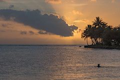 Tropical Sunset with Palm Trees in Silhouette (Merrillie) Tags: holidays landscape sunset tropics palmtrees sea sun southpacific silhouettes ocean coastal island summer seascape tropical fiji coralcoast waterscape
