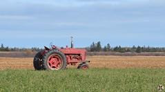 Farmall (Kennuth) Tags: farmall tractors princeedwardisland unlimitedphotos cans2s