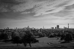 London skyline from Primrose Hill (PaulGibsonPhoto) Tags: london primrosehill skyline view vista capital city cityscrape bw mono fuji fujifilm x100s landmarks park skyscraper clouds