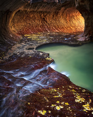 Subway in Fall Color (Bereno DMD) Tags: subway rock zion national park canyon southwest utah desert creek left fork north water stream river tunnel glow glowing morning light reflection reflected warm spring bucket list panoramic 50mm f14 sigma 14 dg hsm art nikon d850 full frame green stone landscape sandstone erosion geology fullframe fall color colors adventure trip hike leaves leaf waterfall pool tube reflectedlight pan panorama panoramicshot longexposure longshutter