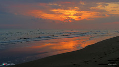 ALBA COLORATA. (Salvatore Lo Faro) Tags: alba sole mare cielo nubi nuvole rosso fuoco spiaggia arenile risacca onde spuma riflessi gargano puglia italia italy salvatore lofaro canon g16
