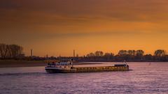 Winterabend am Rhein (Of Light & Lenses) Tags: rhein rheinland sonnenuntergang sunset river rhine winter evening coucherdesoleil boat deutschland flusslandschaft