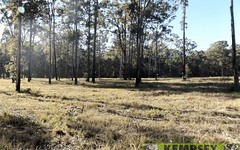 Lot 52 Kemps Access, Collombatti NSW