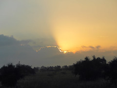 Slice of sunlight (igor29768) Tags: sunrise sun ray clouds mist kenya africa panasonic lumix gx7 425mm