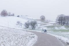 2019 Bike 180: Day 5, January 20 (suzanne~) Tags: 2019bike180 snow winter bike bicycle tree path road park olympicpark munich bavaria germany hill