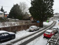 February 1st, 2019 Obligatory snow photo! (karenblakeman) Tags: starroad caversham uk cars road tree fence snow february 2019 2019pad reading berkshire