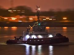 RT Adriaan (1) @ Gallions Reach 15-11-18 (AJBC_1) Tags: riverthames northwoolwich newham londonboroughofnewham eastlondon london england unitedkingdom uk ship boat vessel tug tugboat dlrblog ©ajc gallionsreach ukshipping etug hybrid hybridrototug damen damenshipyardsgroup damonart8032 shipsinpictures rtadriaan kotugsmittowage ajbc1 nikond5300 night nighttime darkness dark