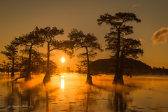 Another sunrise shot @ Caddo Lake (FollowingNature (Yao Liu)) Tags: bayou visittexas fallcolors foliage baldcypress swamp lights reflection followingnature lake misty sunrise texas caddolake